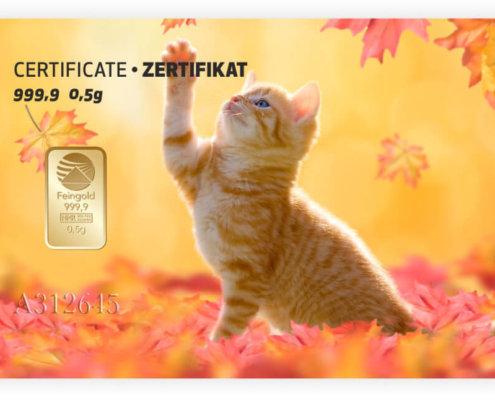 Gold Geschenkkarte